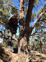 Hanging Bird Box - Berringa Sanctuary Berringa