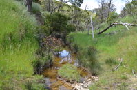 Moonlight Creek - The Block Sanctuary Berringa