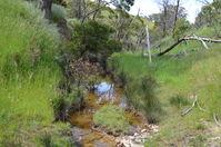 Moonlight Creek - The Block Sanctuary Berringa