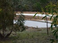 The 4 tier wet lands that was put in 2012