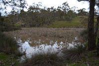The block - Berringa Sanctuary